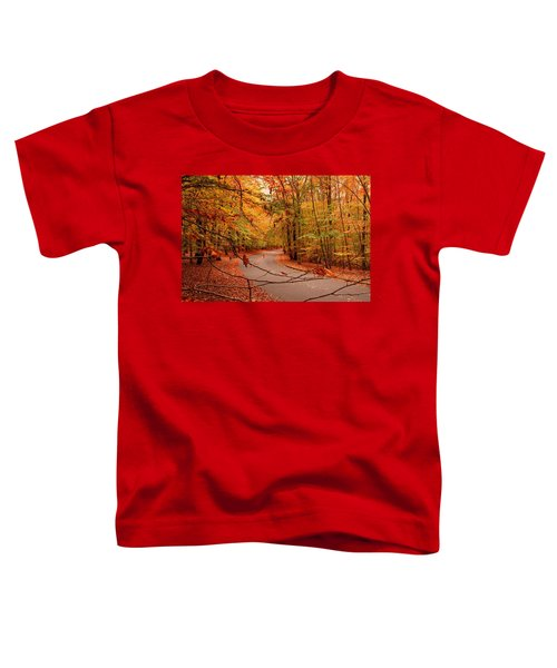 Autumn In Holmdel Park Toddler T-Shirt