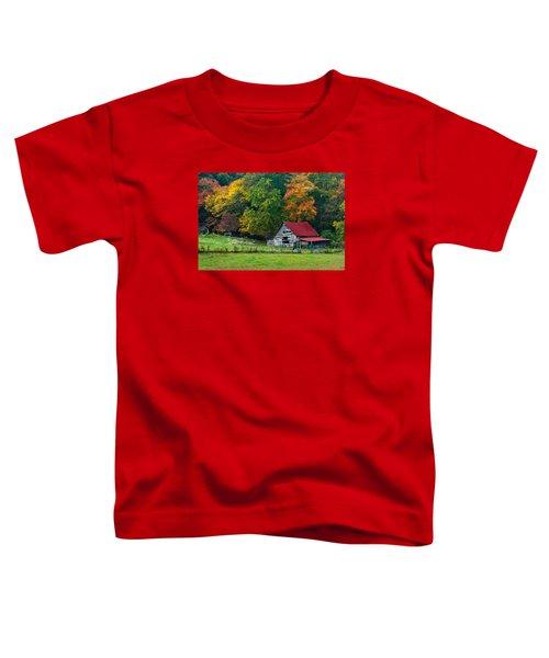 Candy Mountain Toddler T-Shirt