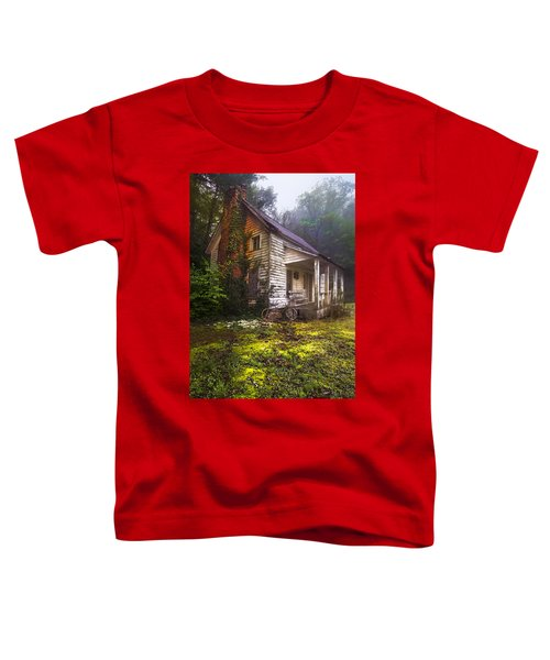 Toddler T-Shirt featuring the photograph Childhood Dreams by Debra and Dave Vanderlaan