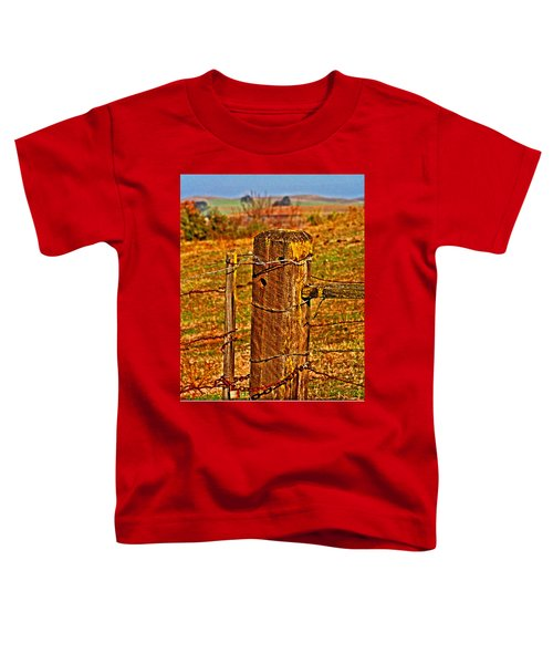 Corner Post At Gate Toddler T-Shirt