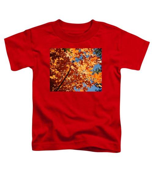 Fall Colors 2 Toddler T-Shirt