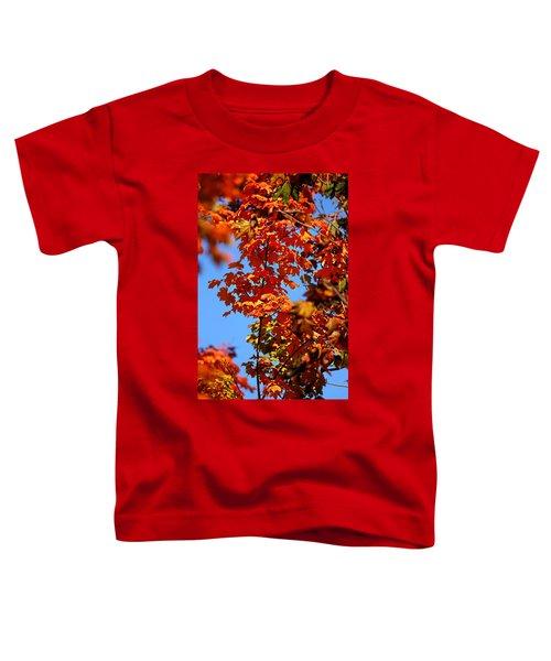 Fall Foliage Colors 15 Toddler T-Shirt