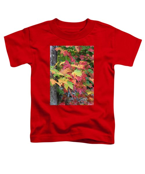 Fall Is Here Toddler T-Shirt