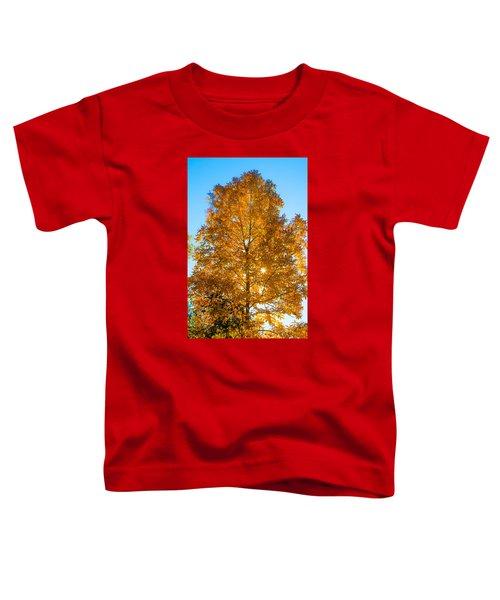 Fall Tree Toddler T-Shirt