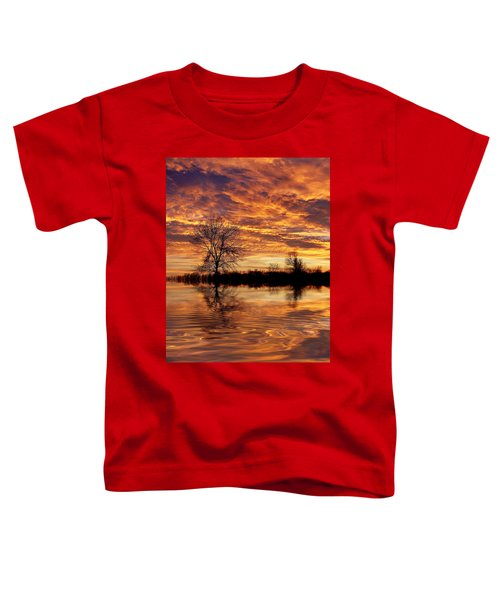 Fire Painters In The Sky Toddler T-Shirt by Bill Pevlor