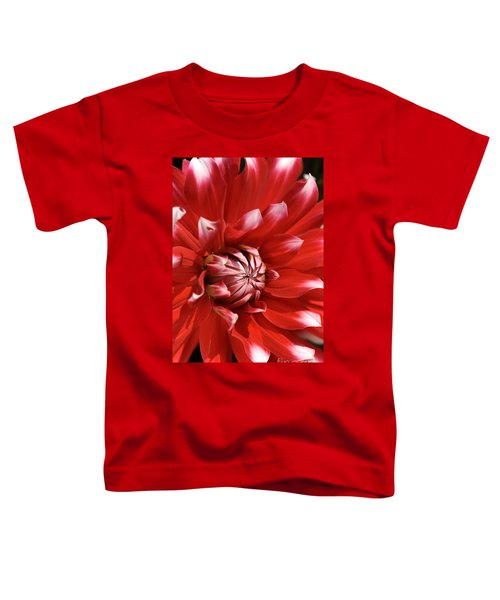 Flower- Dahlia-red-white Toddler T-Shirt