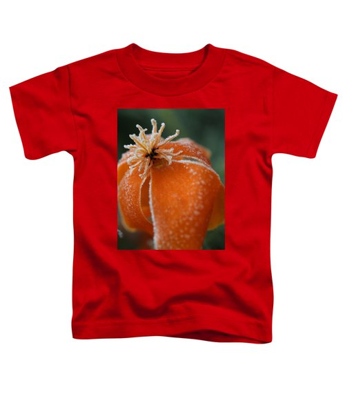 Natures Frost Toddler T-Shirt
