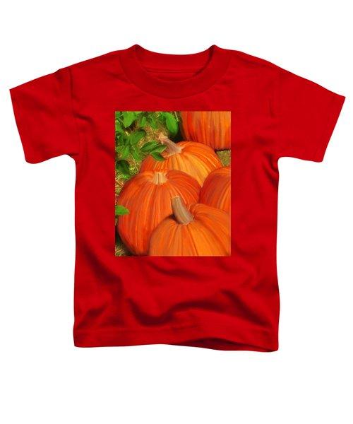Pumpkins Pumpkins Everywhere Toddler T-Shirt