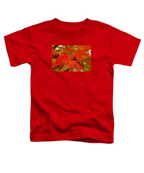 Ravishing Fall Toddler T-Shirt