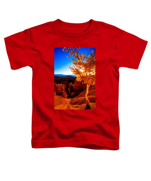 Sunset Fall Toddler T-Shirt
