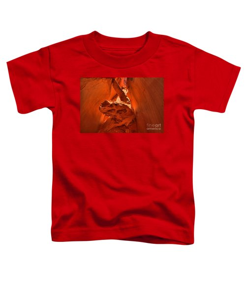 The Paria Dragon Toddler T-Shirt