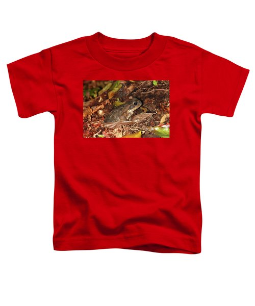 Cane Toad Toddler T-Shirt