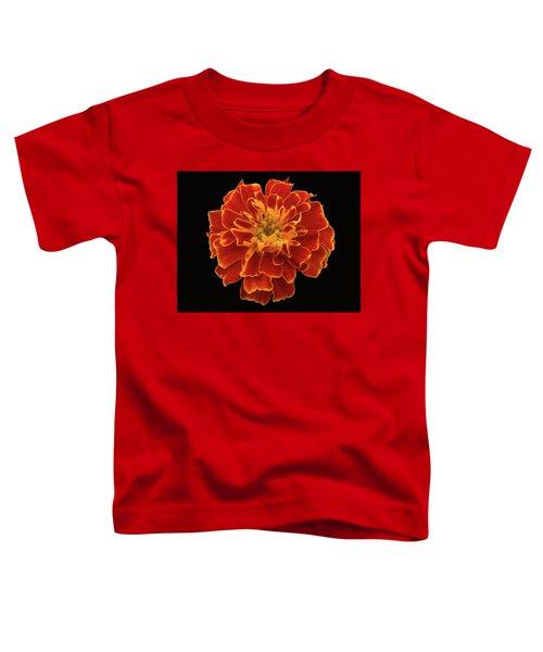 Home Grown Marigold Toddler T-Shirt