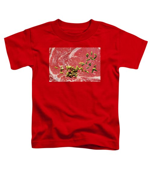 Beef Contaminated With E. Coli Toddler T-Shirt