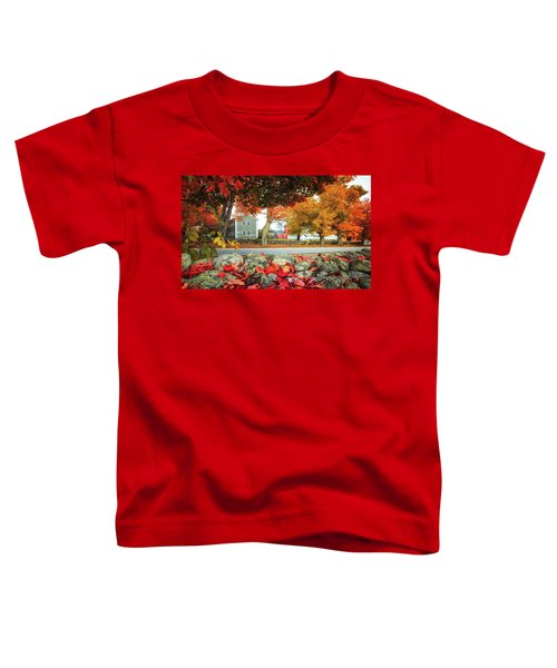 Shaker Village Toddler T-Shirt