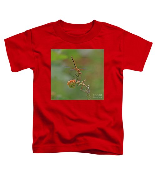 Band-winged Meadowhawk Toddler T-Shirt