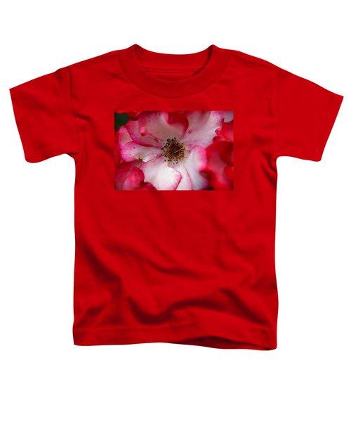 A Bee's Heaven Toddler T-Shirt