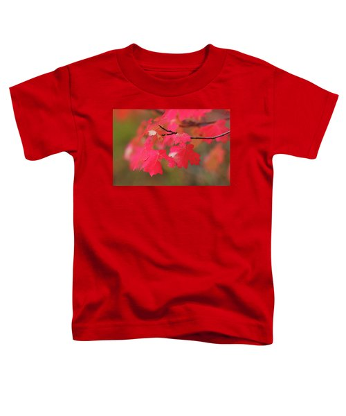 A Flash Of Autumn Toddler T-Shirt