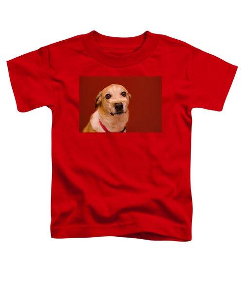 Abbie And A Bone Toddler T-Shirt