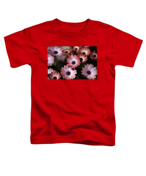 African Daisy Zion Red Toddler T-Shirt