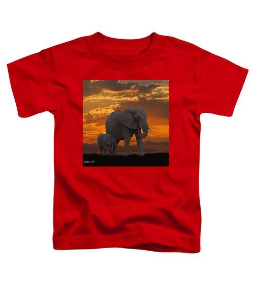 African Sunset-k Toddler T-Shirt