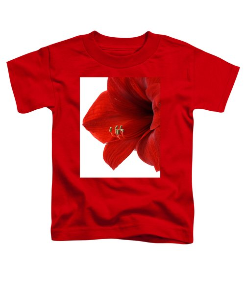 Amaryllis On White 3 Toddler T-Shirt