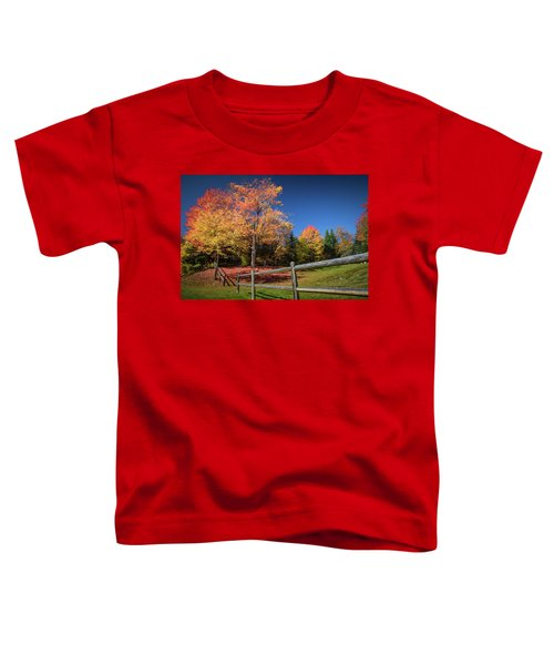 Autumn Color Toddler T-Shirt