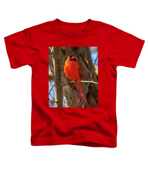 Bright Boy Toddler T-Shirt