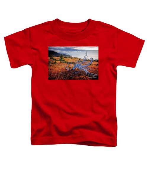 Cape Breton Highlands Toddler T-Shirt