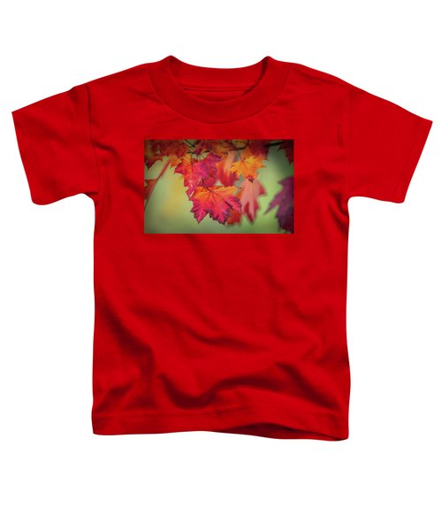 Close-up Of Red Maple Leaves In Autumn Toddler T-Shirt