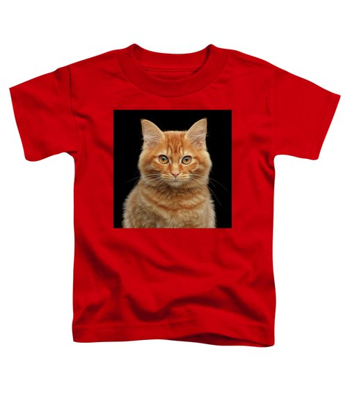 Close-up Portrait Of Ginger Kitty On Black Toddler T-Shirt