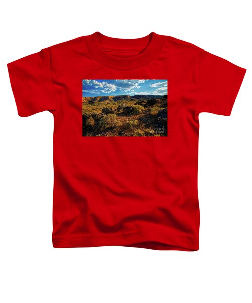 Colorado Summer Evening Toddler T-Shirt