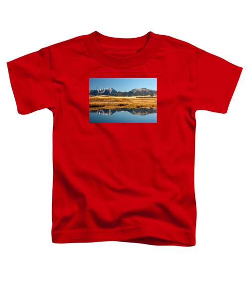 Crazy Mountain Reflections Toddler T-Shirt