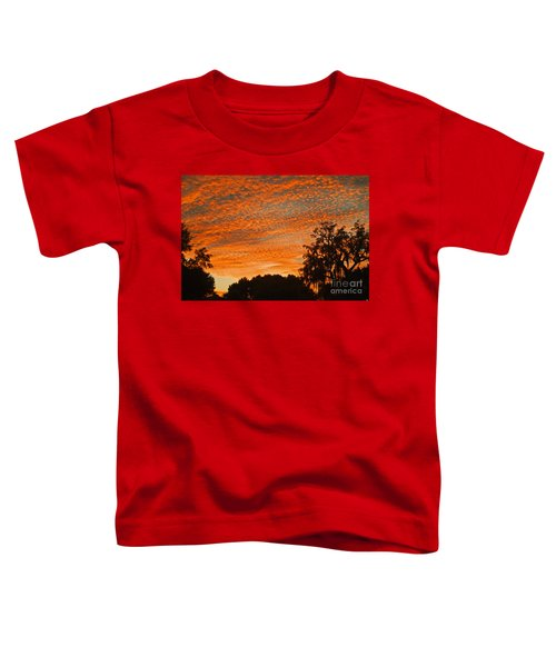 Davenport At Dusk Toddler T-Shirt