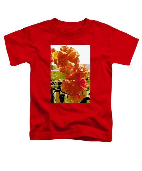 Desert Orange Toddler T-Shirt