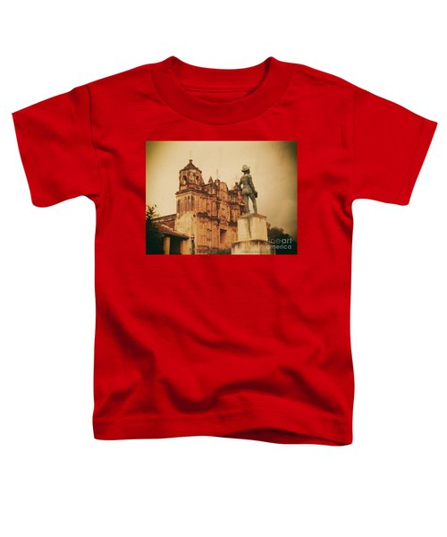 Don Quixote  Toddler T-Shirt