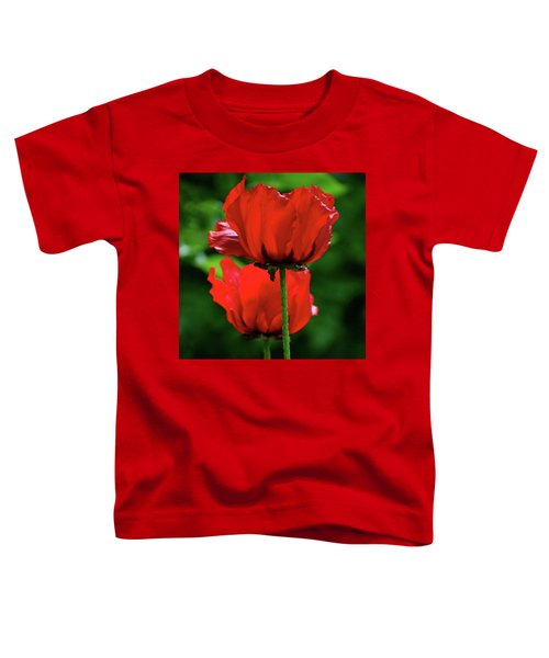 Double Red Poppies Toddler T-Shirt