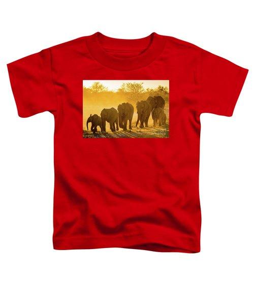 Elephant Sunset Toddler T-Shirt