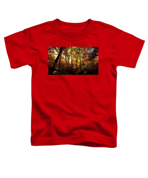 Enchanted Forest Toddler T-Shirt