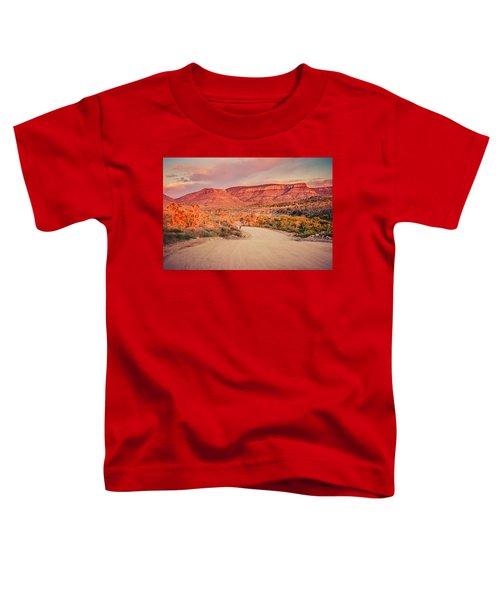 Eruptions On The Sun Toddler T-Shirt