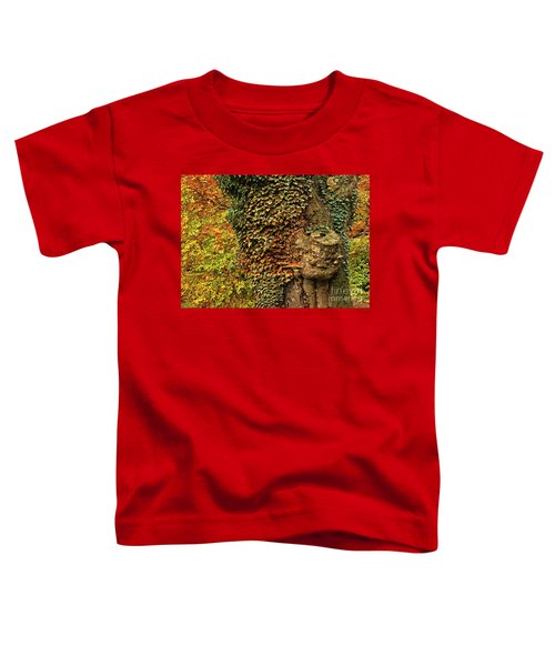 Fall Colors In Nature Toddler T-Shirt