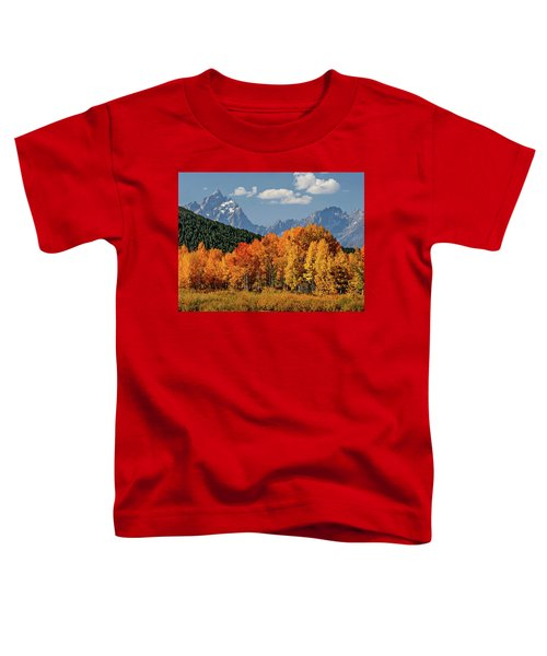 Fall In The Tetons Toddler T-Shirt