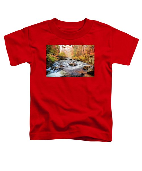 Fall Morning At Gunstock Brook Toddler T-Shirt