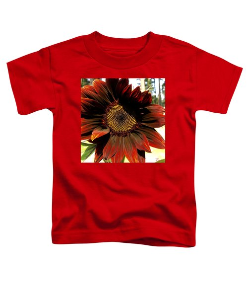 Fibonacci Hues Toddler T-Shirt