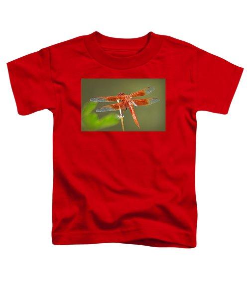 Flame Skimmer Toddler T-Shirt