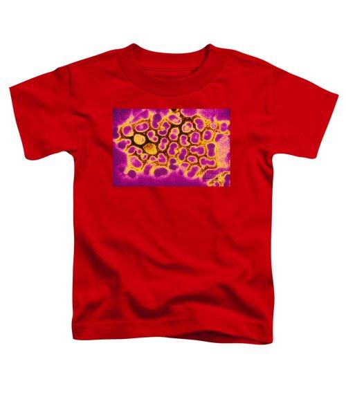 Flu Virus Tem Toddler T-Shirt