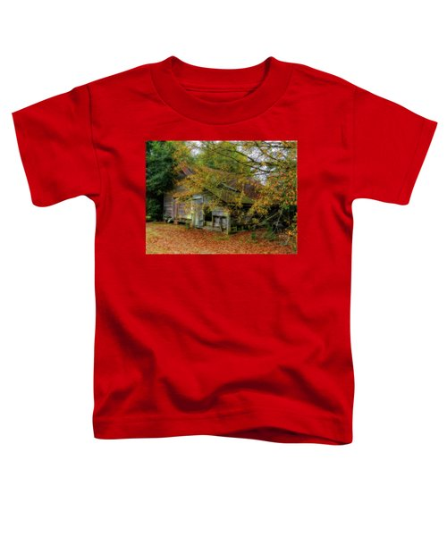 Forgotten Barn Toddler T-Shirt