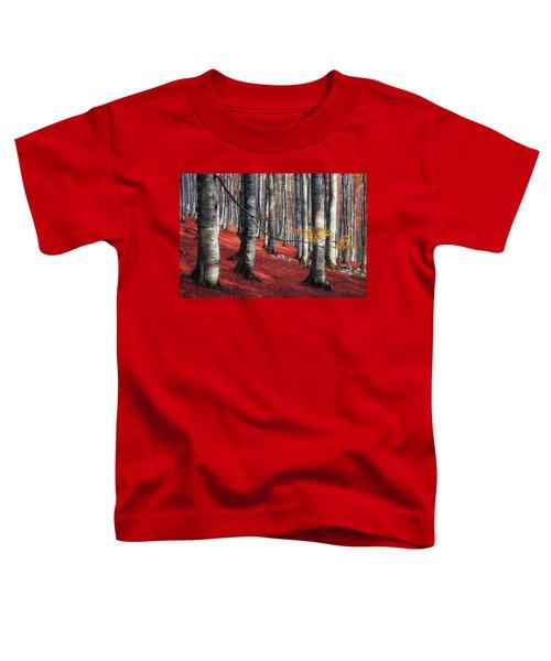 Fragility II Toddler T-Shirt
