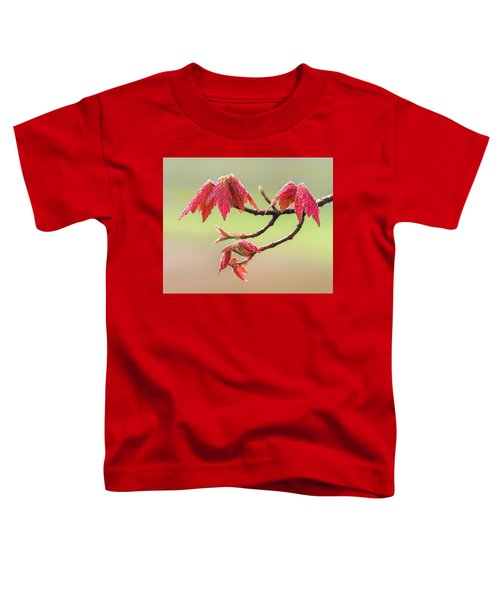 Frosty Maple Leaves Toddler T-Shirt