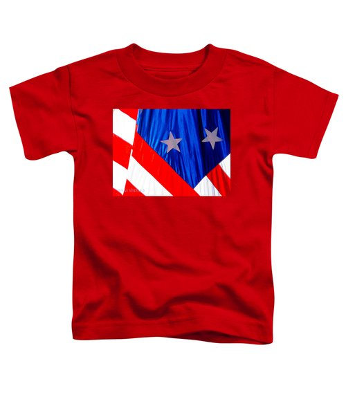 Historical American Flag Toddler T-Shirt